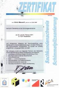 Zertifikat Maler  Mausolf Pforzheim-Ispringen Schimmel beseitigen und Schimmelsanierung